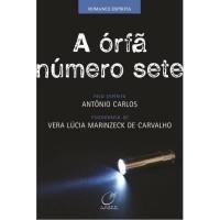 A Órfã Número Sete  - Vera Lucia Marinzeck