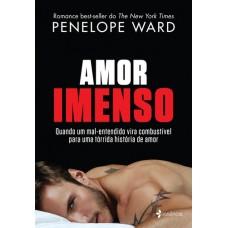 Amor Imenso - Penelope Ward - 8542209346